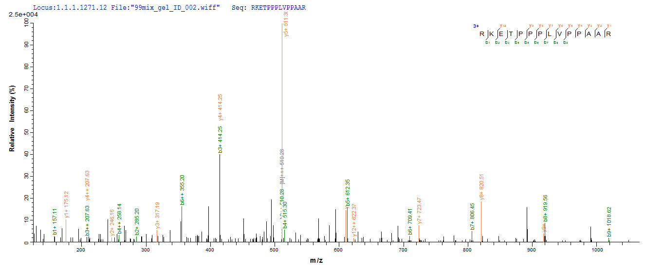 SEQUEST analysis of LC MS/MS spectra obtained from a run with QP8020 identified a match between this protein and the spectra of a peptide sequence that matches a region of Methylosome protein 50.