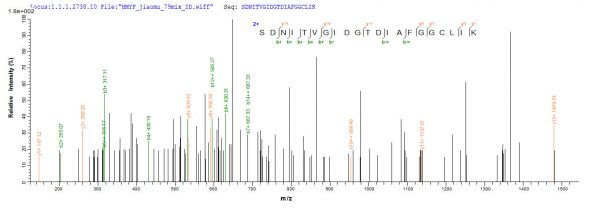 SEQUEST analysis of LC MS/MS spectra obtained from a run with QP8581 identified a match between this protein and the spectra of a peptide sequence that matches a region of Beta-lactamase.