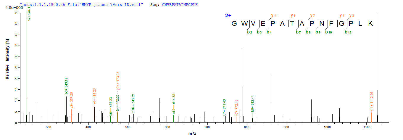 Additional SEQUEST analysis of the LC MS/MS spectra from QP8581 identified an additional between this protein and the spectra of another peptide sequence that matches a region of Beta-lactamase confirming successful recombinant synthesis.