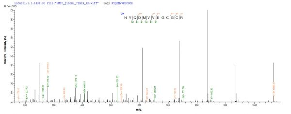 SEQUEST analysis of LC MS/MS spectra obtained from a run with QP8660 identified a match between this protein and the spectra of a peptide sequence that matches a region of BMP-2.