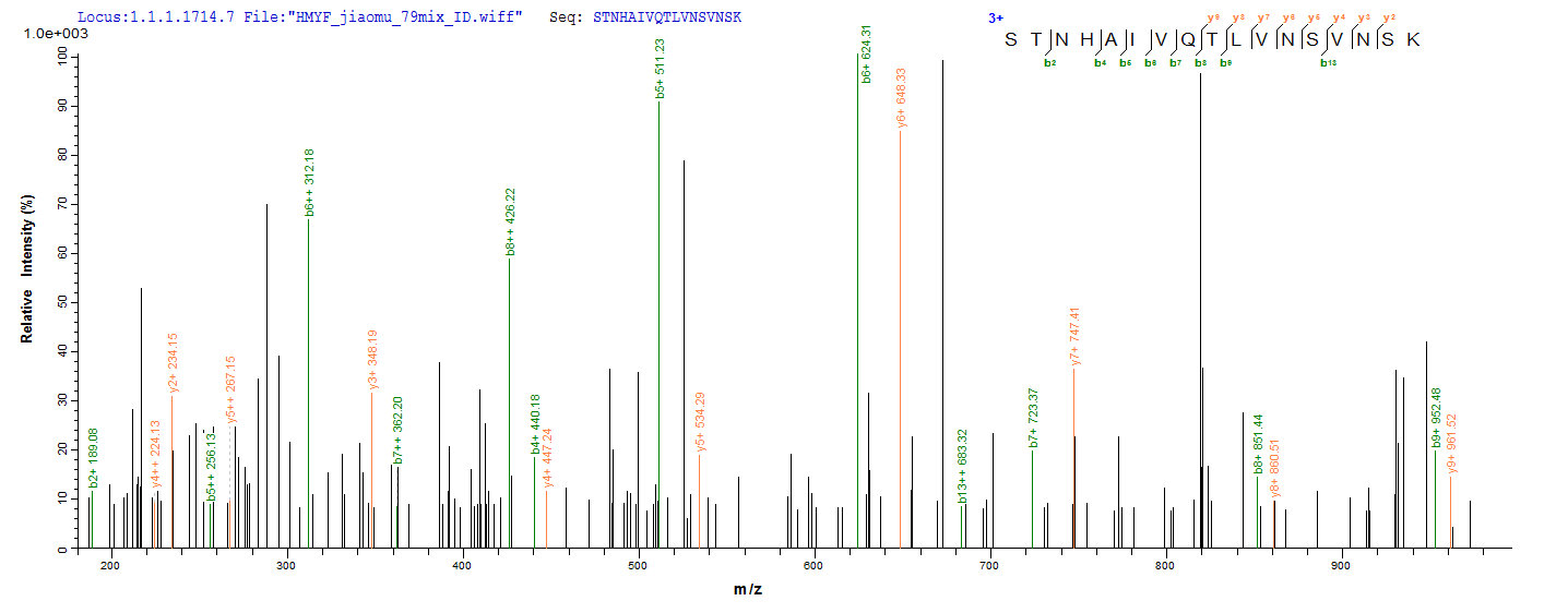 Additional SEQUEST analysis of the LC MS/MS spectra from QP8660 identified an additional between this protein and the spectra of another peptide sequence that matches a region of BMP-2 confirming successful recombinant synthesis.