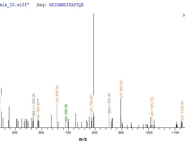 SEQUEST analysis of LC MS/MS spectra obtained from a run with QP8765 identified a match between this protein and the spectra of a peptide sequence that matches a region of Annexin A1.
