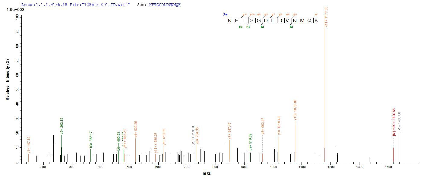 SEQUEST analysis of LC MS/MS spectra obtained from a run with QP8796 identified a match between this protein and the spectra of a peptide sequence that matches a region of Vacuolating cytotoxin autotransporter.