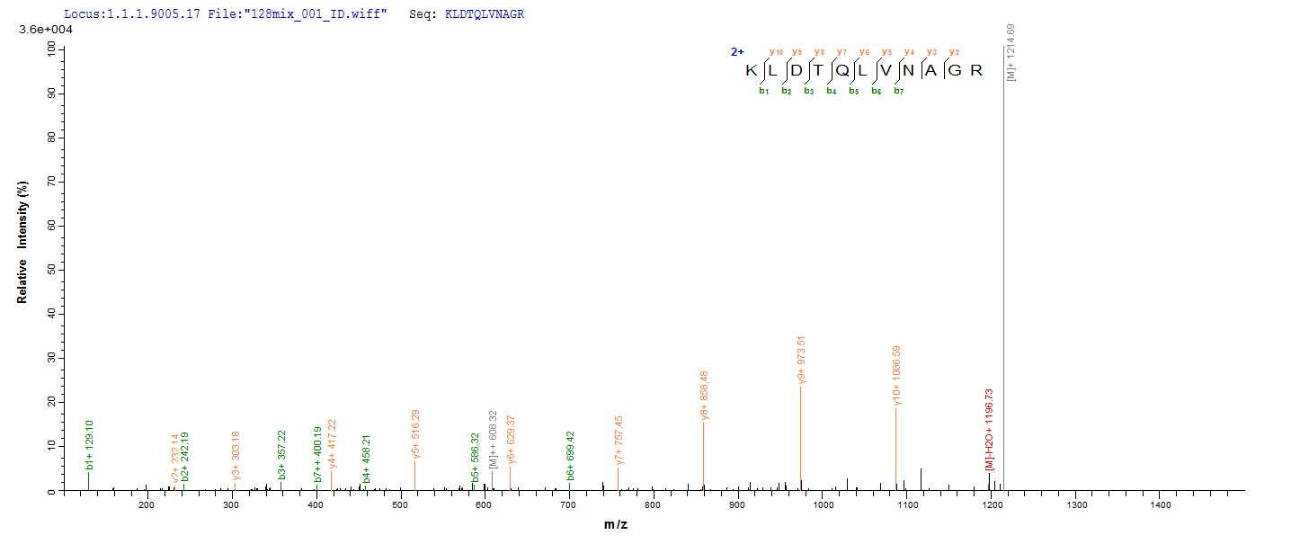 Additional SEQUEST analysis of the LC MS/MS spectra from QP8801 identified an additional between this protein and the spectra of another peptide sequence that matches a region of Cystathionine beta-lyase MetC confirming successful recombinant synthesis.