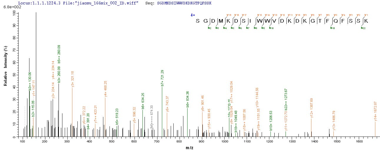 Additional SEQUEST analysis of the LC MS/MS spectra from QP8867 identified an additional between this protein and the spectra of another peptide sequence that matches a region of Transcription factor PU.1 confirming successful recombinant synthesis.