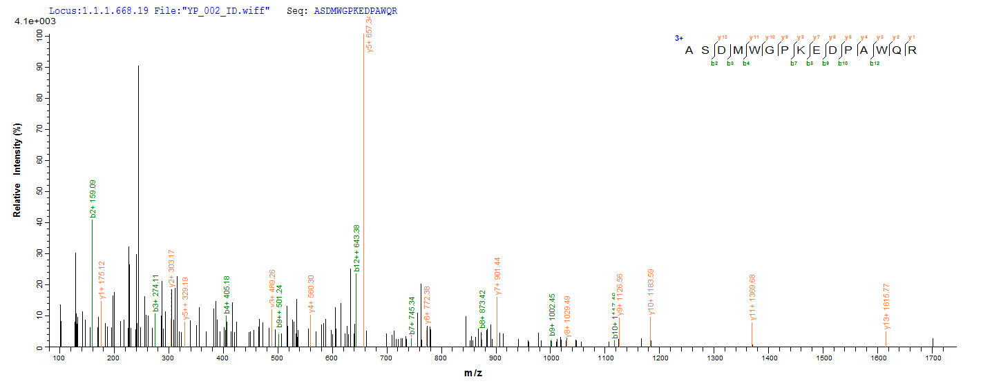 SEQUEST analysis of LC MS/MS spectra obtained from a run with QP8929 identified a match between this protein and the spectra of a peptide sequence that matches a region of Ag85A.