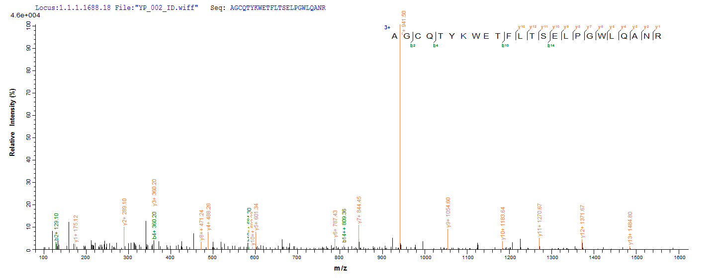 Additional SEQUEST analysis of the LC MS/MS spectra from QP8929 identified an additional between this protein and the spectra of another peptide sequence that matches a region of Ag85A confirming successful recombinant synthesis.