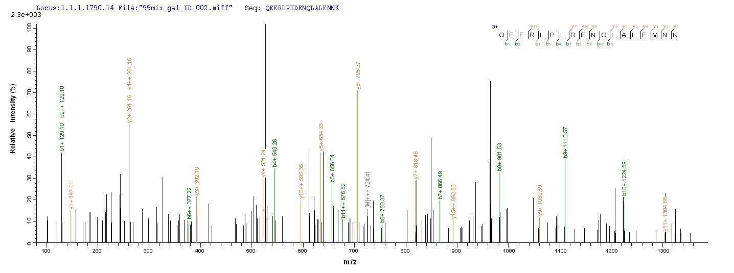 SEQUEST analysis of LC MS/MS spectra obtained from a run with QP9276 identified a match between this protein and the spectra of a peptide sequence that matches a region of CD10 / Neprilysin / MME.