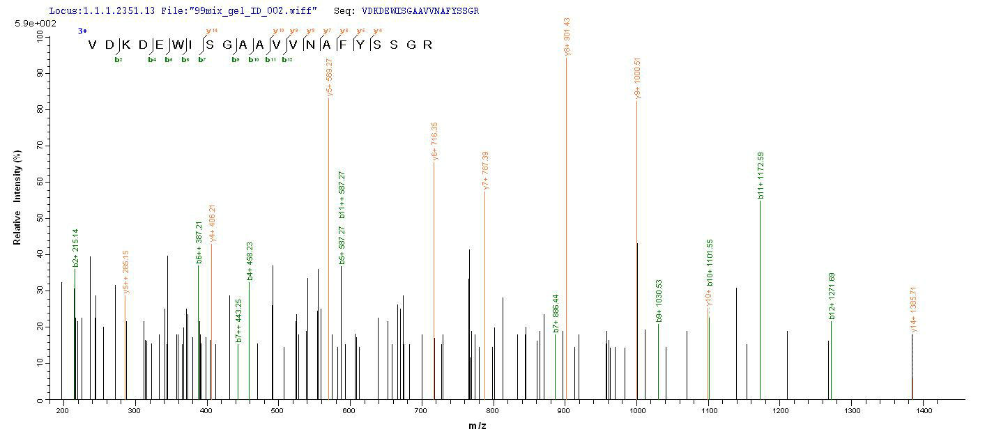 Additional SEQUEST analysis of the LC MS/MS spectra from QP9276 identified an additional between this protein and the spectra of another peptide sequence that matches a region of CD10 / Neprilysin / MME confirming successful recombinant synthesis.