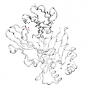 AMPD2  protein 3D structural model from Catalog of Somatic Mutations in Cancer originally published in the paper COSMIC: somatic cancer genetics at high-resolution