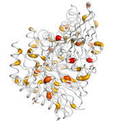 ASRGL1  protein 3D structural model from Catalog of Somatic Mutations in Cancer originally published in the paper COSMIC: somatic cancer genetics at high-resolution