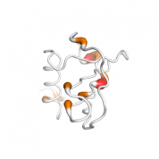 BCA 1  protein 3D structural model from Catalog of Somatic Mutations in Cancer originally published in the paper COSMIC: somatic cancer genetics at high-resolution