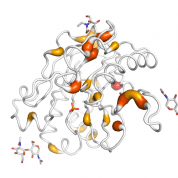 DNase  protein 3D structural model from Catalog of Somatic Mutations in Cancer originally published in the paper COSMIC: somatic cancer genetics at high-resolution