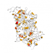 PECI  protein 3D structural model from Catalog of Somatic Mutations in Cancer originally published in the paper COSMIC: somatic cancer genetics at high-resolution