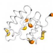 ERCC1  protein 3D structural model from Catalog of Somatic Mutations in Cancer originally published in the paper COSMIC: somatic cancer genetics at high-resolution