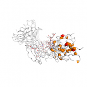 FCGR3A  protein 3D structural model from Catalog of Somatic Mutations in Cancer originally published in the paper COSMIC: somatic cancer genetics at high-resolution
