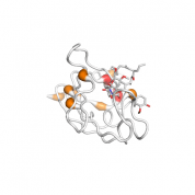 FKBP2  protein 3D structural model from Catalog of Somatic Mutations in Cancer originally published in the paper COSMIC: somatic cancer genetics at high-resolution
