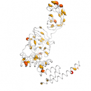 FKBP5  protein 3D structural model from Catalog of Somatic Mutations in Cancer originally published in the paper COSMIC: somatic cancer genetics at high-resolution