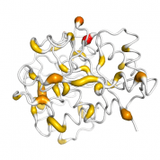 GGH  protein 3D structural model from Catalog of Somatic Mutations in Cancer originally published in the paper COSMIC: somatic cancer genetics at high-resolution