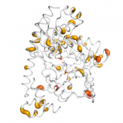 GPT2  protein 3D structural model from Catalog of Somatic Mutations in Cancer originally published in the paper COSMIC: somatic cancer genetics at high-resolution