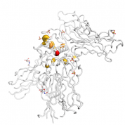 IL 13  protein 3D structural model from Catalog of Somatic Mutations in Cancer originally published in the paper COSMIC: somatic cancer genetics at high-resolution