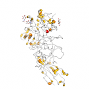 IL1RL1  protein 3D structural model from Catalog of Somatic Mutations in Cancer originally published in the paper COSMIC: somatic cancer genetics at high-resolution