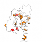 IL 2  protein 3D structural model from Catalog of Somatic Mutations in Cancer originally published in the paper COSMIC: somatic cancer genetics at high-resolution