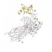 sIL 2R  protein 3D structural model from Catalog of Somatic Mutations in Cancer originally published in the paper COSMIC: somatic cancer genetics at high-resolution