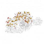 CD18  protein 3D structural model from Catalog of Somatic Mutations in Cancer originally published in the paper COSMIC: somatic cancer genetics at high-resolution