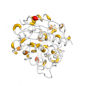 NNMT   protein 3D structural model from Catalog of Somatic Mutations in Cancer originally published in the paper COSMIC: somatic cancer genetics at high-resolution