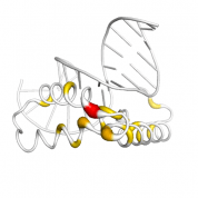 SOX9  protein 3D structural model from Catalog of Somatic Mutations in Cancer originally published in the paper COSMIC: somatic cancer genetics at high-resolution