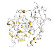 TDG  protein 3D structural model from Catalog of Somatic Mutations in Cancer originally published in the paper COSMIC: somatic cancer genetics at high-resolution