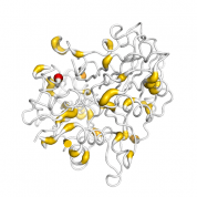 TDP1  protein 3D structural model from Catalog of Somatic Mutations in Cancer originally published in the paper COSMIC: somatic cancer genetics at high-resolution