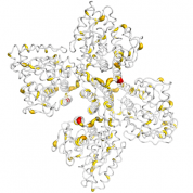 TH  protein 3D structural model from Catalog of Somatic Mutations in Cancer originally published in the paper COSMIC: somatic cancer genetics at high-resolution