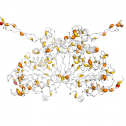 THG1L  protein 3D structural model from Catalog of Somatic Mutations in Cancer originally published in the paper COSMIC: somatic cancer genetics at high-resolution
