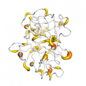 Enterokinase  protein 3D structural model from Catalog of Somatic Mutations in Cancer originally published in the paper COSMIC: somatic cancer genetics at high-resolution