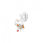 TNFRSF6B  protein 3D structural model from Catalog of Somatic Mutations in Cancer originally published in the paper COSMIC: somatic cancer genetics at high-resolution