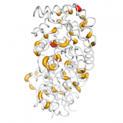 TPI1  protein 3D structural model from Catalog of Somatic Mutations in Cancer originally published in the paper COSMIC: somatic cancer genetics at high-resolution