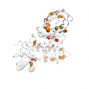 TRAPPC4  protein 3D structural model from Catalog of Somatic Mutations in Cancer originally published in the paper COSMIC: somatic cancer genetics at high-resolution