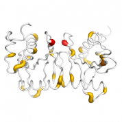TSEN15  protein 3D structural model from Catalog of Somatic Mutations in Cancer originally published in the paper COSMIC: somatic cancer genetics at high-resolution