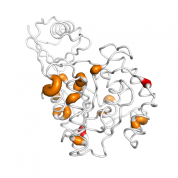 UCHL3  protein 3D structural model from Catalog of Somatic Mutations in Cancer originally published in the paper COSMIC: somatic cancer genetics at high-resolution