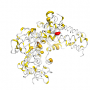 VAV1  protein 3D structural model from Catalog of Somatic Mutations in Cancer originally published in the paper COSMIC: somatic cancer genetics at high-resolution