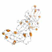 VPS26A  protein 3D structural model from Catalog of Somatic Mutations in Cancer originally published in the paper COSMIC: somatic cancer genetics at high-resolution