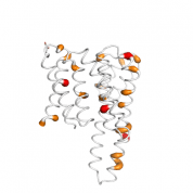 YWHAZ  protein 3D structural model from Catalog of Somatic Mutations in Cancer originally published in the paper COSMIC: somatic cancer genetics at high-resolution